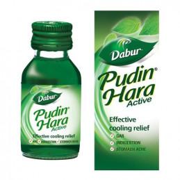 Dabur Pudin Hara - Active,...