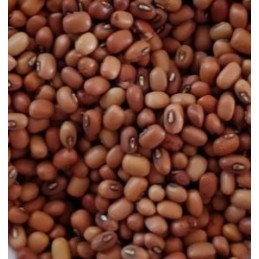Krn Cow Peas (bobbarlu) -red