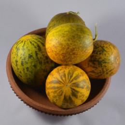 Vg Cucumber (Dosakaya)