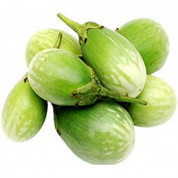 Vg Brinjal ( green , white )