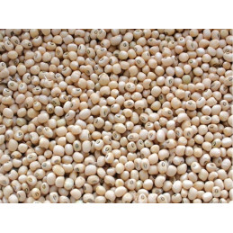 Krn Cow peas - Lobia seeds...