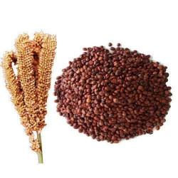 Finger millet (रागी), 500 g