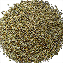Krn Bajra ( Sajjalu ),500 g