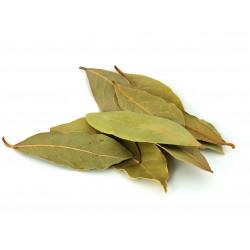 Bay leaf (బిర్యాని ఆకు)