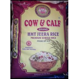 Krn Cow & Calf HMT Jeera...