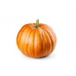 Vg Pumpkin 250g