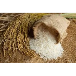 Loose New Raw Rice (కొత్త...