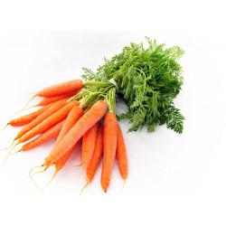 Vg Carrot