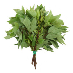 Vg Roselle (Gongura) 3 bunches