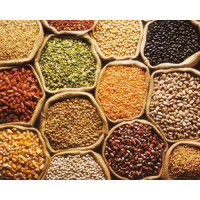 Pulses, Cereals, Millets: VizagGrocers.com : Buy Pulses Online at Our Store at best price in Visakhapatnam